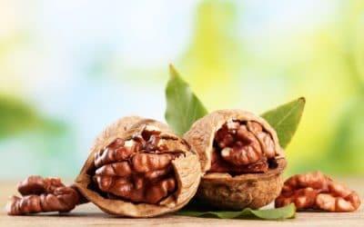 Орех - божествена храна за здраве и дълголетие