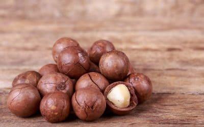 Macadamia - a silky caress for beauty