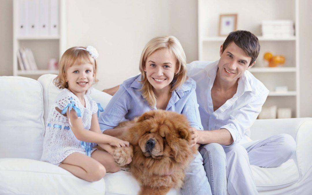 Чист дом – здраво и щастливо семейство